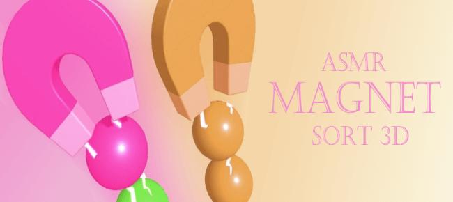 ASMR Magnet Sort 3D