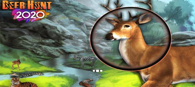 Deer Hunt 2020