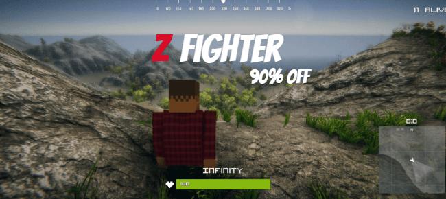Z Fighter